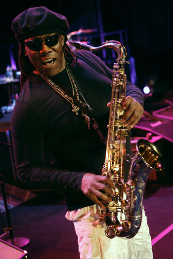 clarenceclemons2